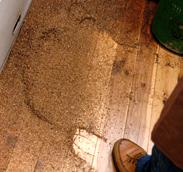 床に落ちたチャフ